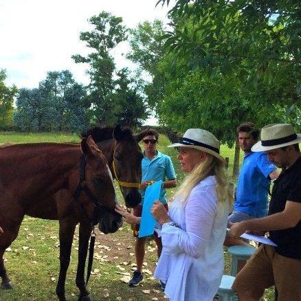 Coaching con Caballos Deportivo - Nadine Bell